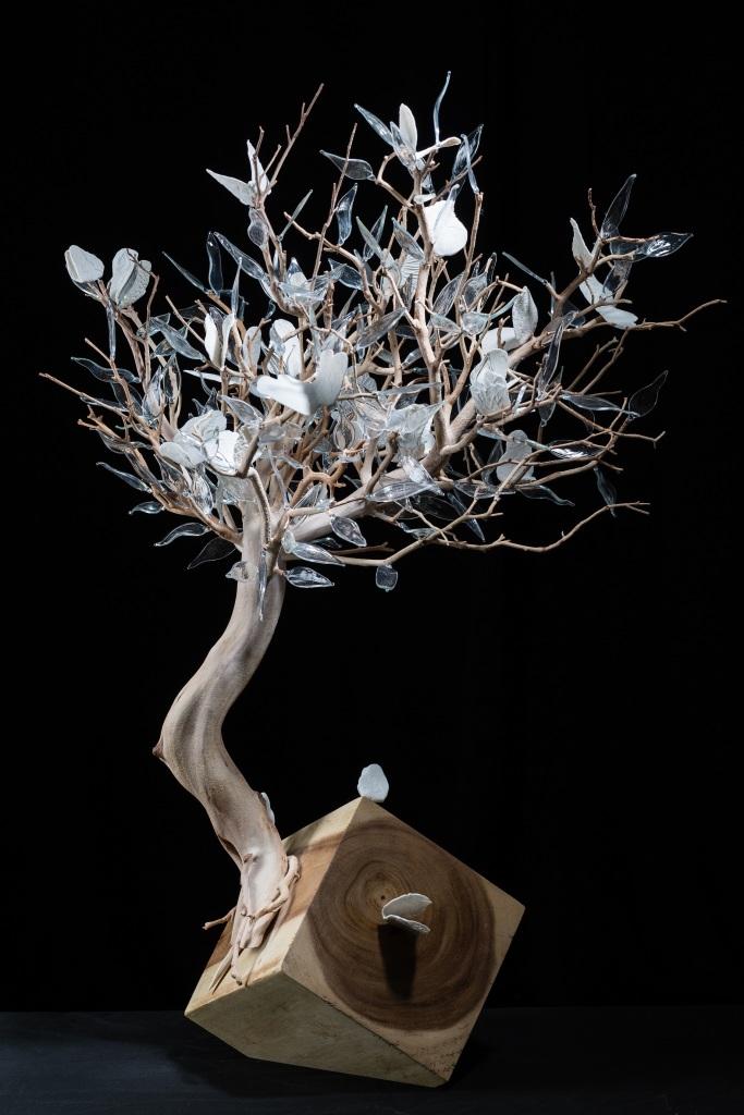 Geneviève Mathieu et Manoli Gonzalez, L'Arbre aux papillons
