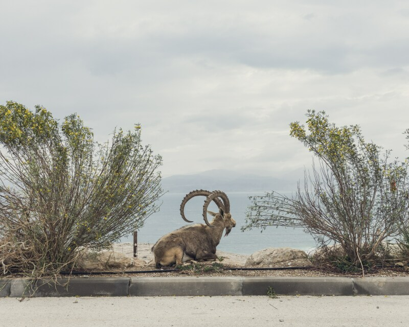 © Clément Chapillon