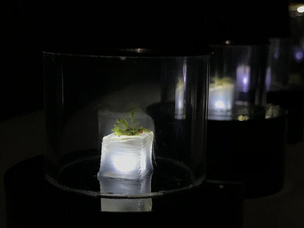 Vue de l'exposition Cycle Mutations Créations 3, La Fabrique du vivant, Erika Verzutti, Centre Pompidou, Paris (48)