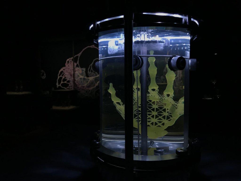Vue de l'exposition Cycle Mutations Créations 3, La Fabrique du vivant, Erika Verzutti, Centre Pompidou, Paris (50)