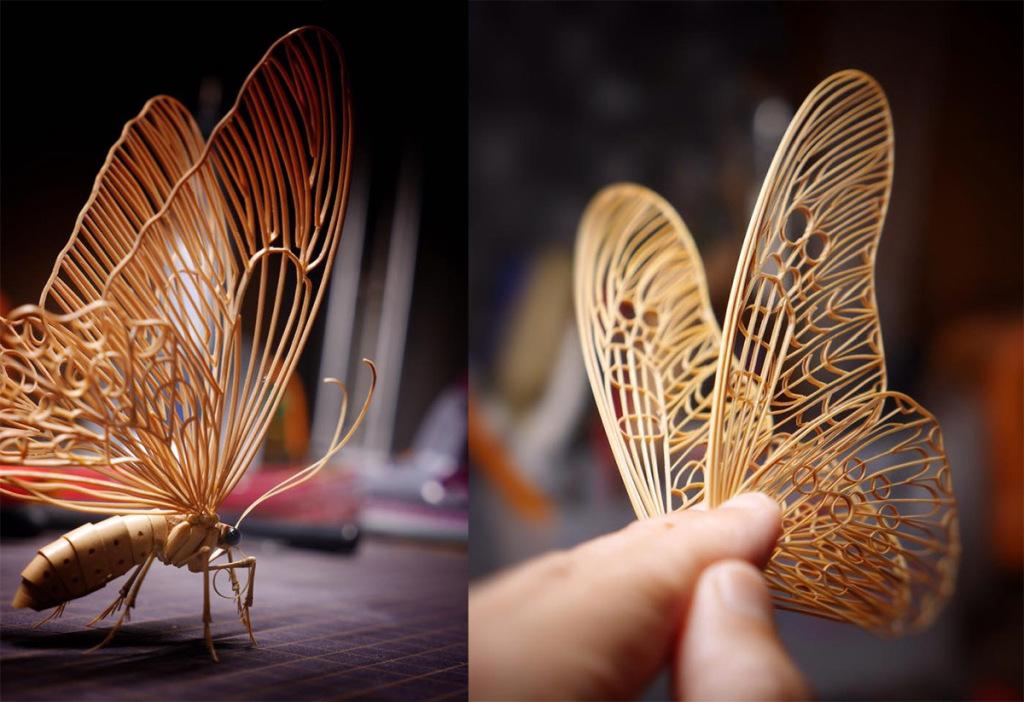 détail, papillon, (c) Noriyuki Saitoh, tous droits réservés