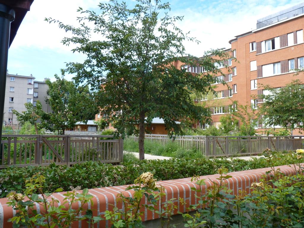 Jardins partagés à la cité-jardins de Suresnes