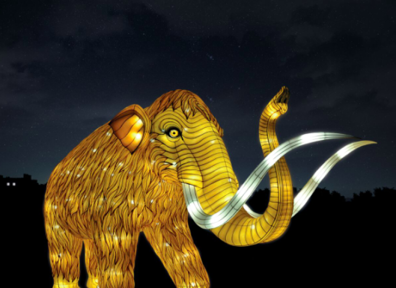 ©China Light Festival B et ©Tianyu Arts & Culture.Inc