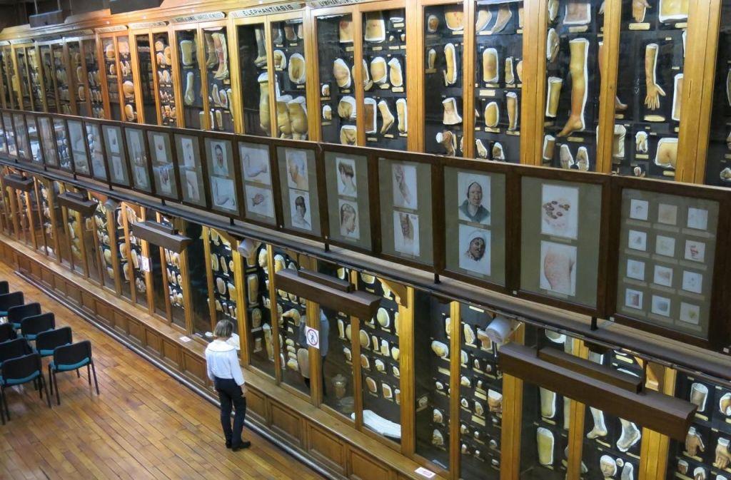 Musée des moulages (2)