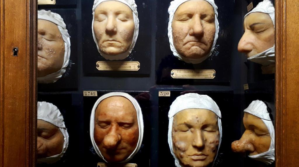 Musée des moulages (3)