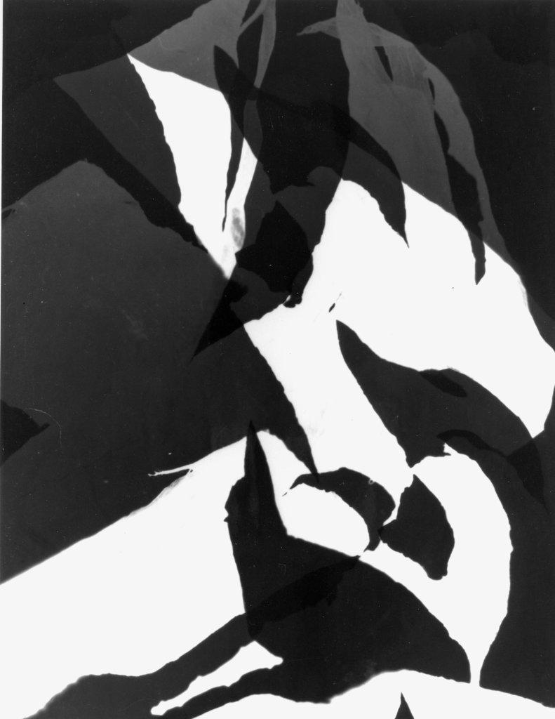 Raoul Hausmann, 1951