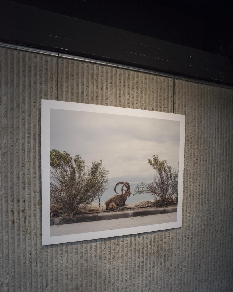 Vue de l'exposition Clément Chapillon - MAC Créteil (11)