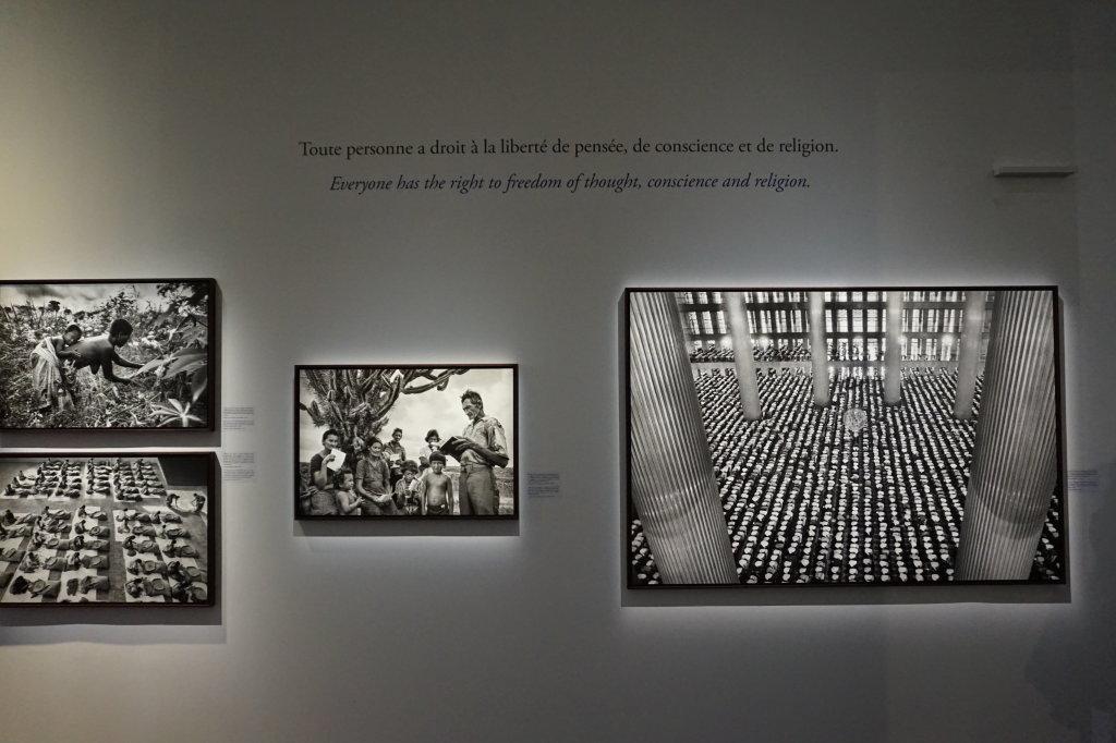 Vue de l'exposition Déclarations au Musée de l'Homme (8)