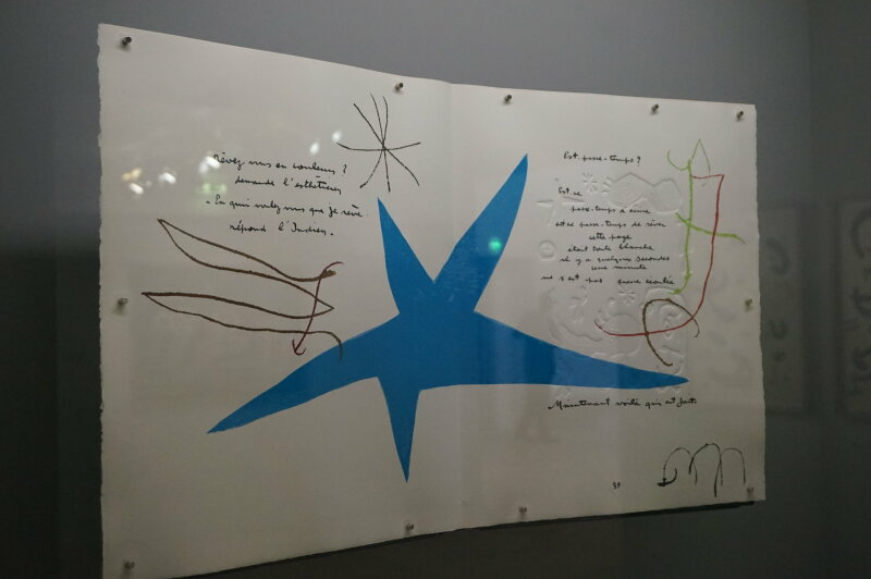 Vue de l'exposition Miro au Grand Palais - Paris 2018 (18)