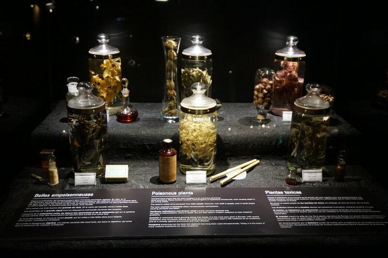 Vue de l'exposition Poison au Palais de la Découverte (20)