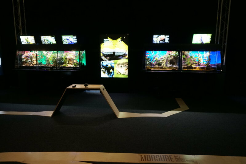 Vue de l'exposition Poison au Palais de la Découverte (33)