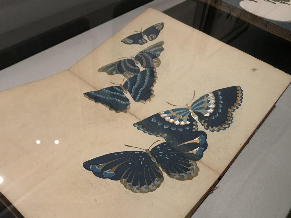 Vue de l'exposition Trésors de Kyoto - Musée Cernuschi (52)
