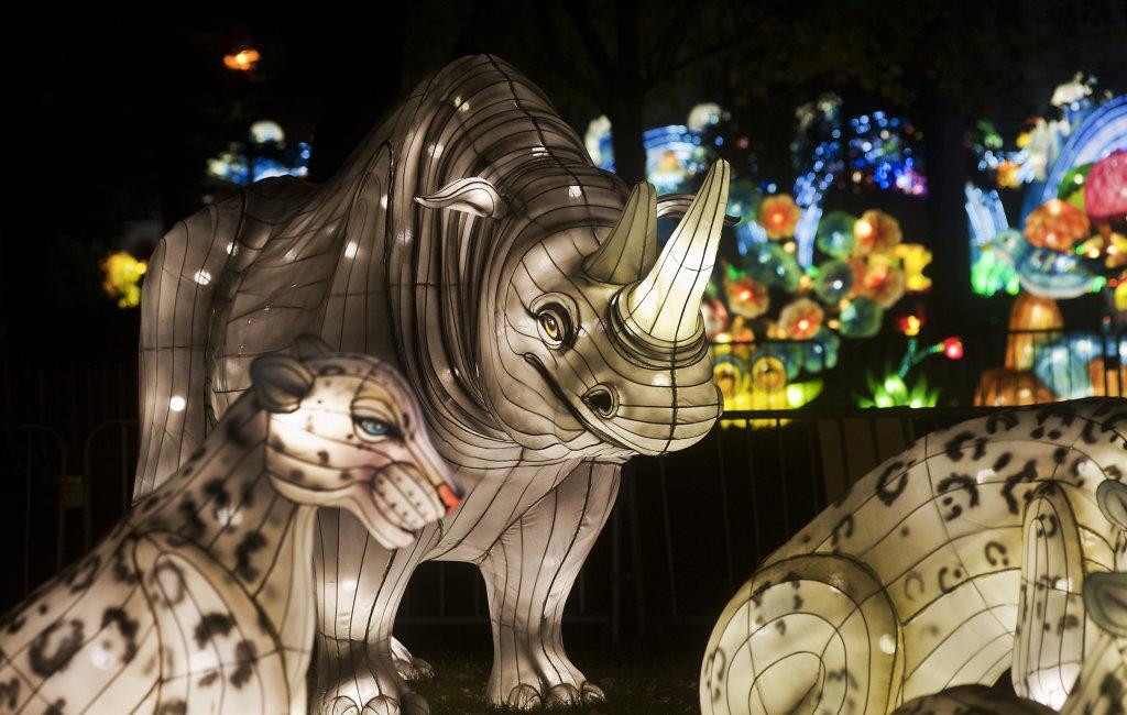 Festival China Light