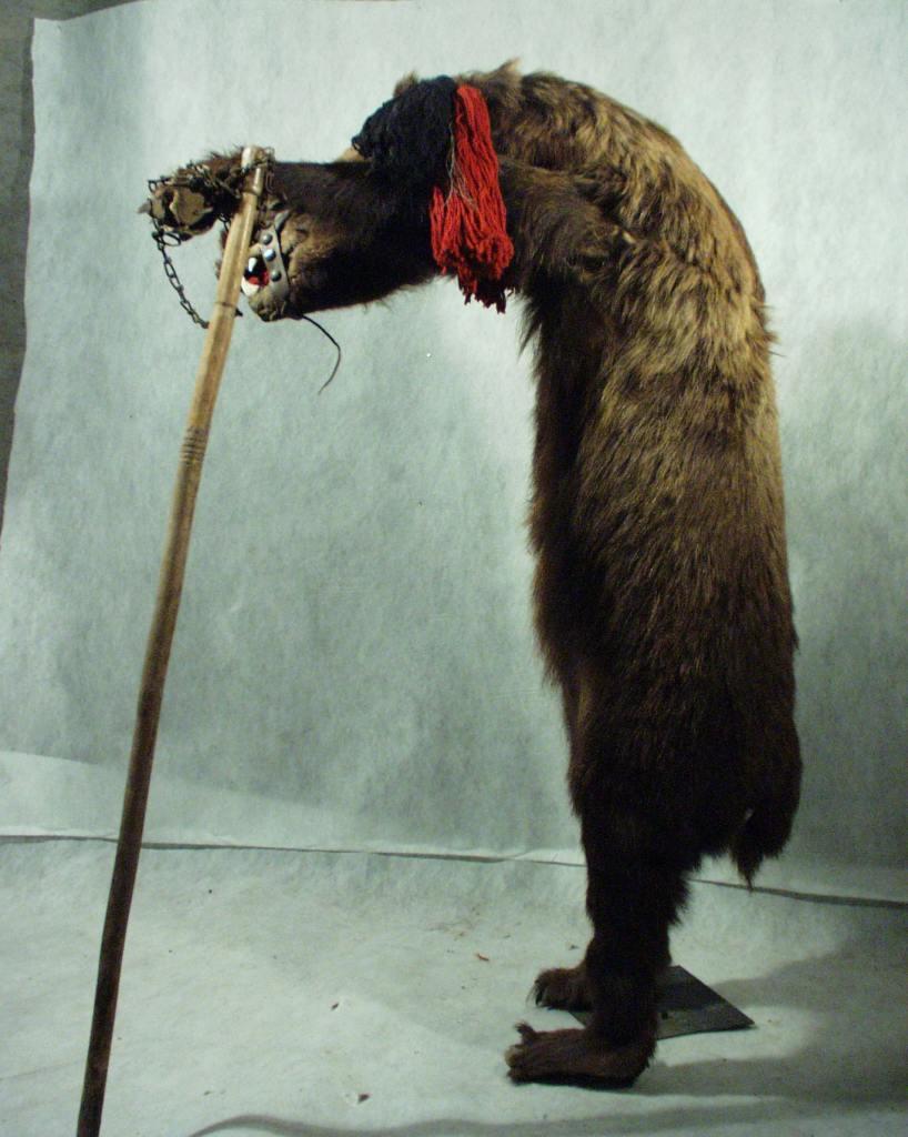 Mircéar Cantor, « Vânătorul de imagini »