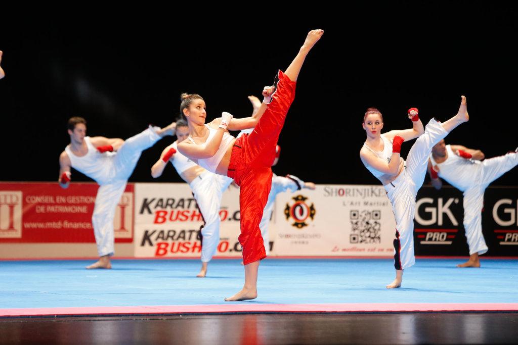 Festival des arts martiaux (2)
