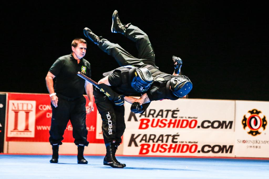 Festival des arts martiaux (9)
