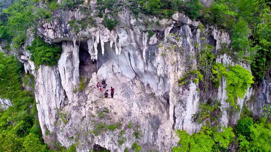 Grotte abritant les plus anciens dessins figuratifs du monde, Bornéo