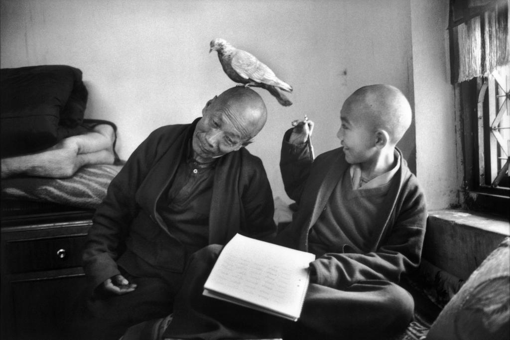 Tulku Khentrul Lodro Rabsel, 12 ans, avec son tuteur Lhagyel, monastère Shechen, Bodnath, Népal, 1966