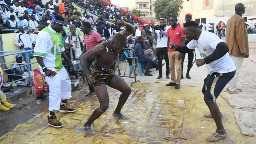 Moussa Sarr, La danse des lions