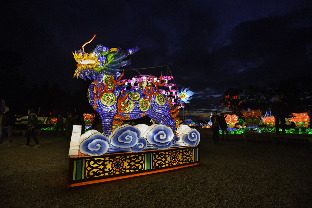 Visuel Festival des Lanternes 11