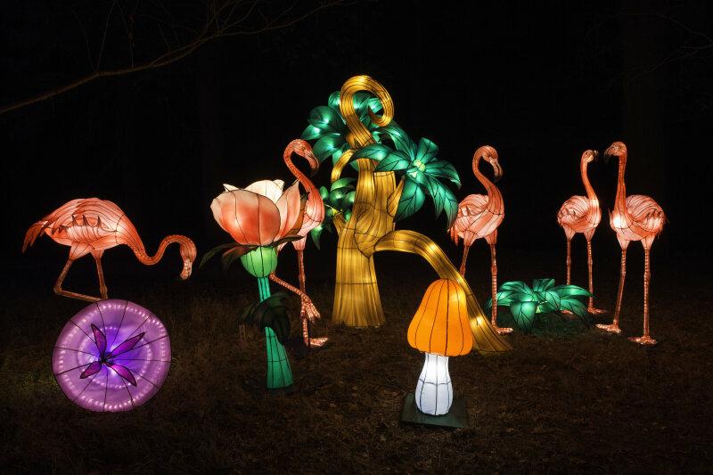 Visuel Festival des Lanternes 2