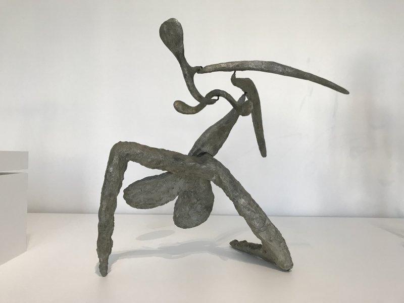 Vue de l'exposition Calder-Picasso, Musée Picasso, Paris (34)