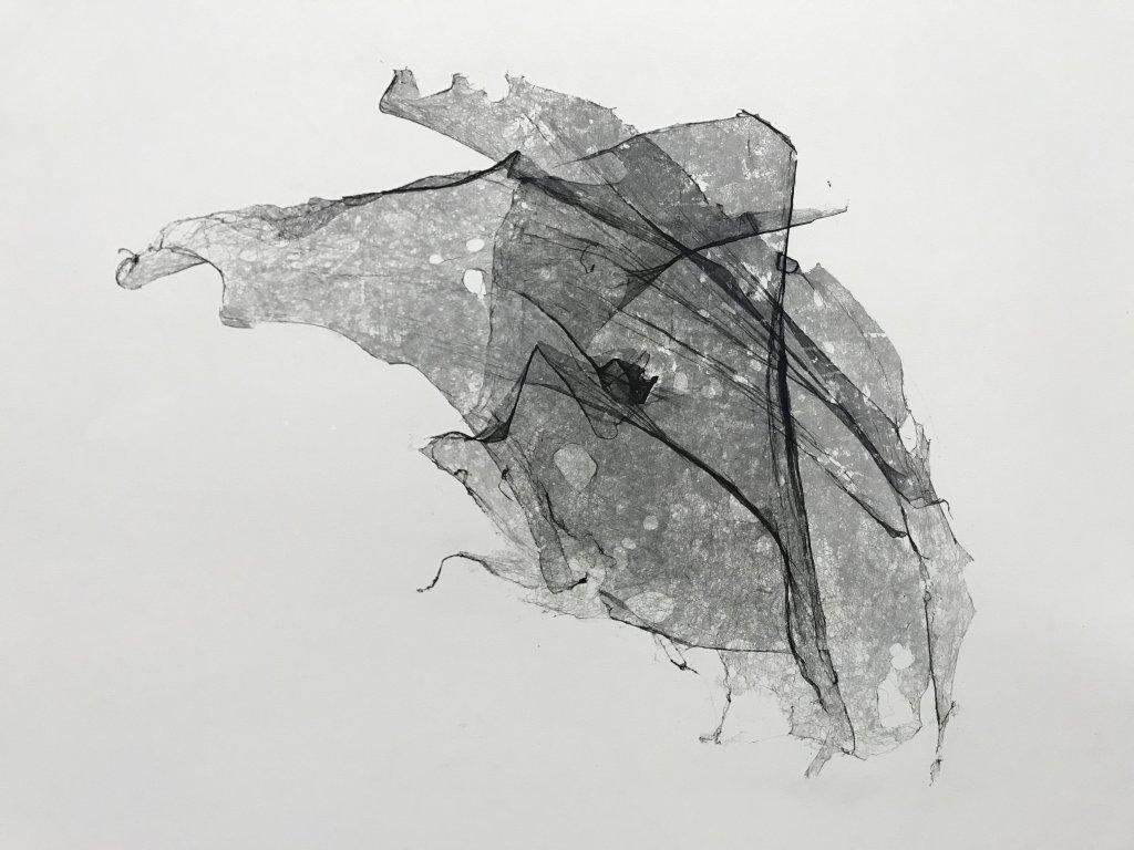Vue de l'exposition carte blanche à Tomas Saraceno - Palais de Tokyo (33)