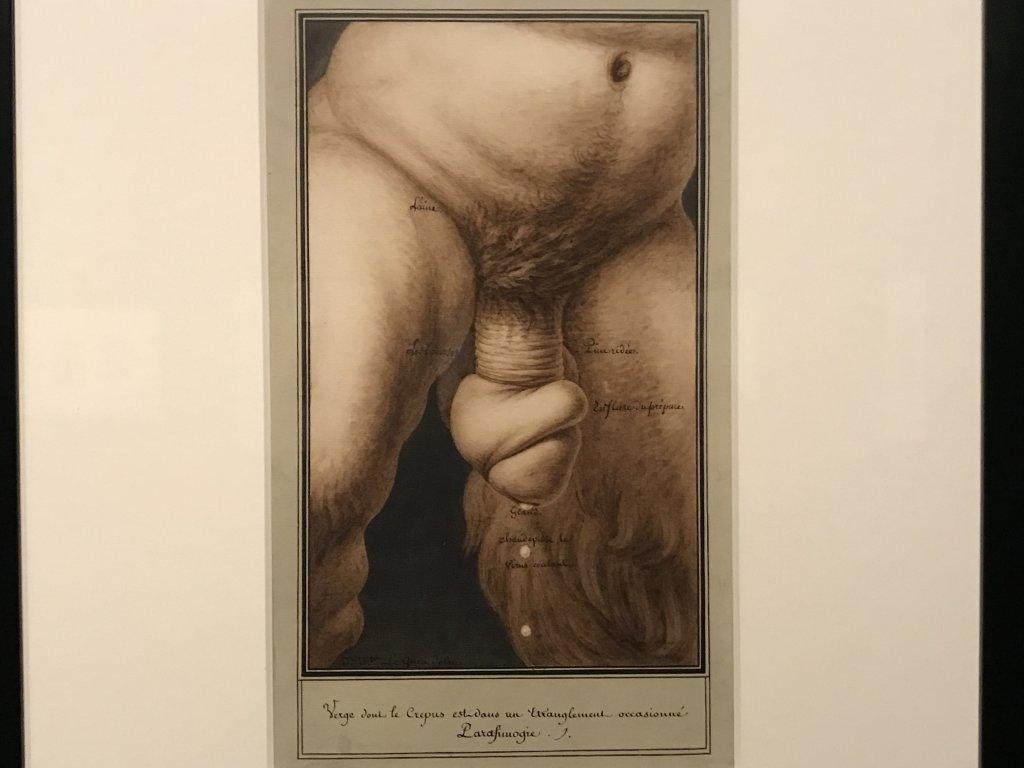 Vue de l'exposition Jean-Jacques Lequeu, Bâtisseur de fantasmes - Petit Palais (64)