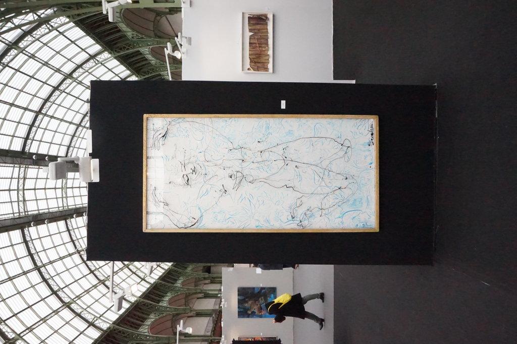 Vue du Salon du dessin et de la peinture à l'eau -ART CAPITAL 2017 - Grand Palais, Paris (85)