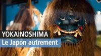 Yokainoshima, Musée des Confluences