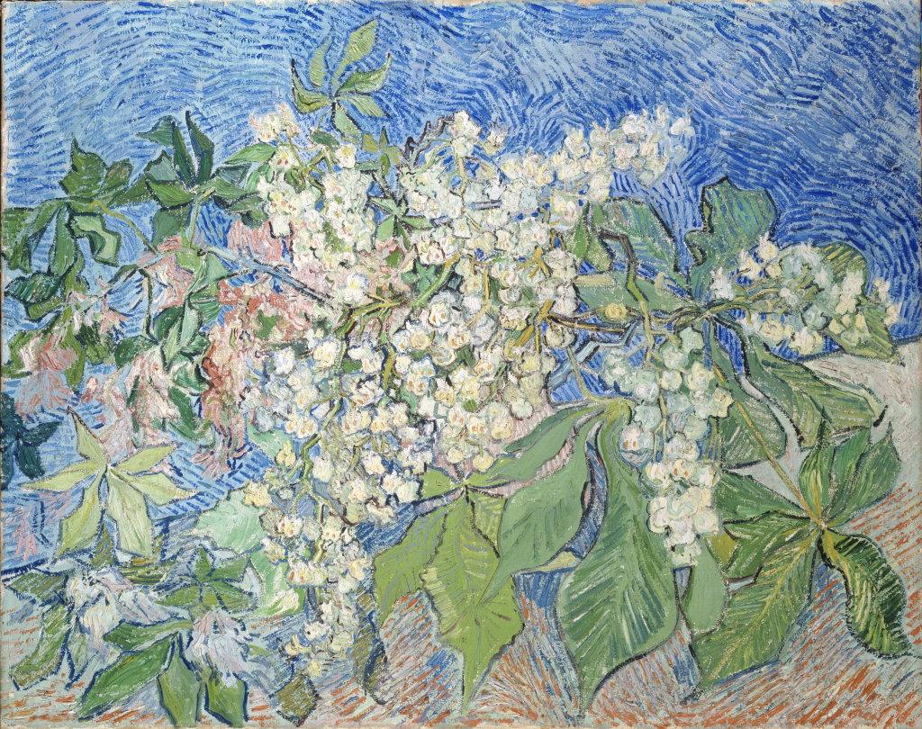Vincent van Gogh, Branches de marronniers en fleur, 1890