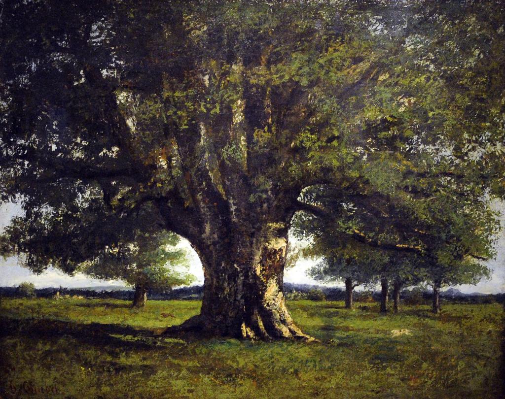 Gustave Corubet, Chêne de Flagey