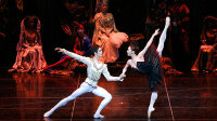 Lac des Cygnes, Universal Ballet