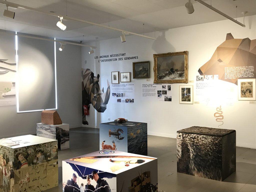 Vue de l'exposition Des animaux et des gendarmes, Musée de la Gnedarmerie nationale, Melun, IDF (1)