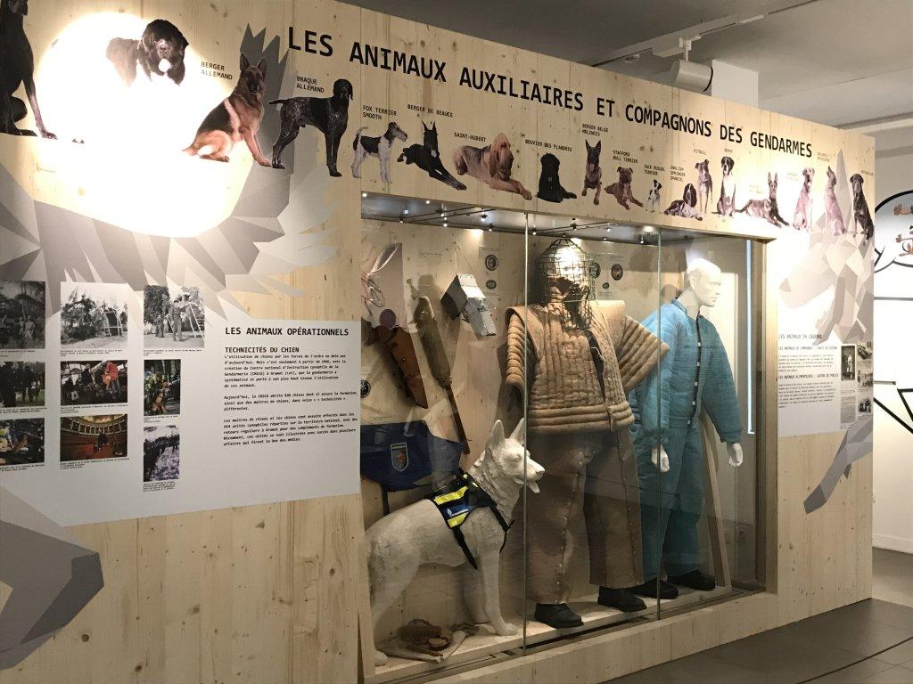 Vue de l'exposition Des animaux et des gendarmes, Musée de la Gnedarmerie nationale, Melun, IDF (10)