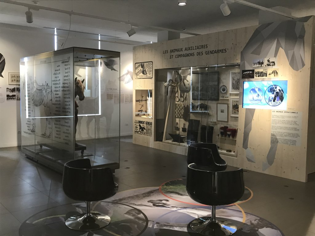 Vue de l'exposition Des animaux et des gendarmes, Musée de la Gnedarmerie nationale, Melun, IDF (16)