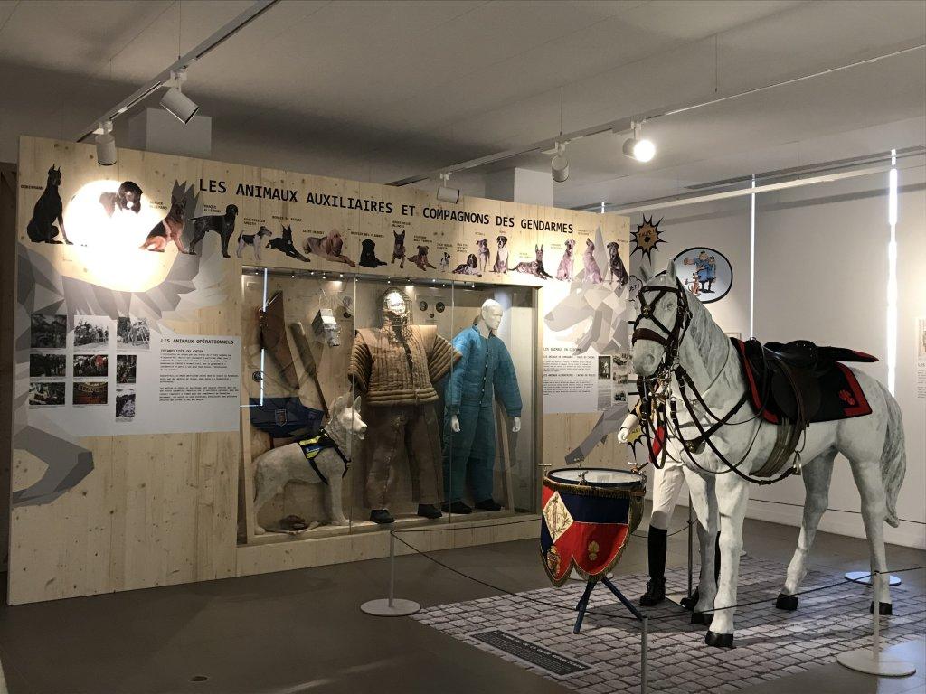 Vue de l'exposition Des animaux et des gendarmes, Musée de la Gnedarmerie nationale, Melun, IDF (17)