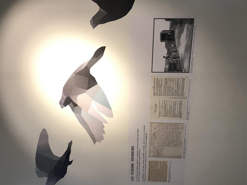 Vue de l'exposition Des animaux et des gendarmes, Musée de la Gnedarmerie nationale, Melun, IDF (2)