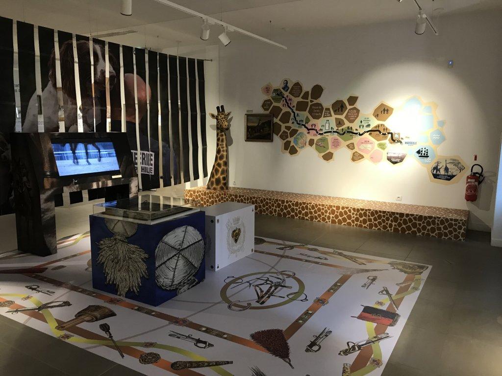 Vue de l'exposition Des animaux et des gendarmes, Musée de la Gnedarmerie nationale, Melun, IDF (21)
