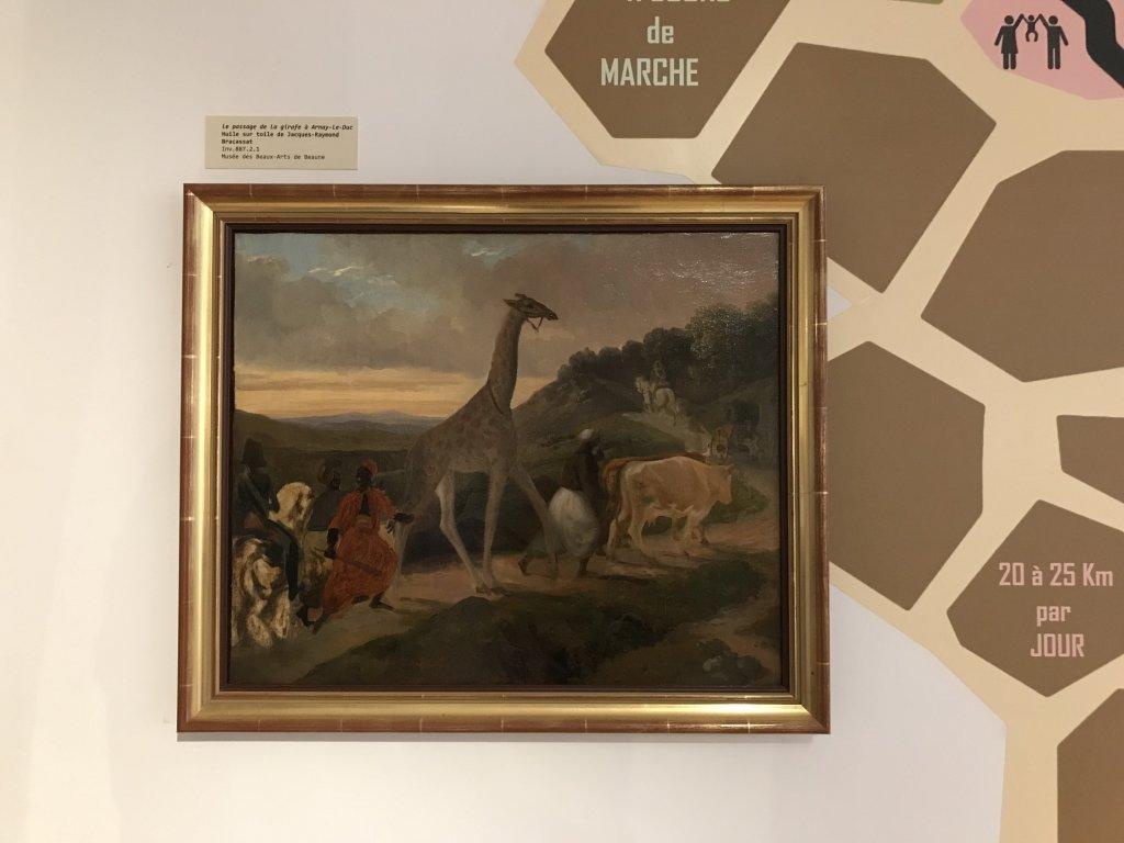 Vue de l'exposition Des animaux et des gendarmes, Musée de la Gnedarmerie nationale, Melun, IDF (22)