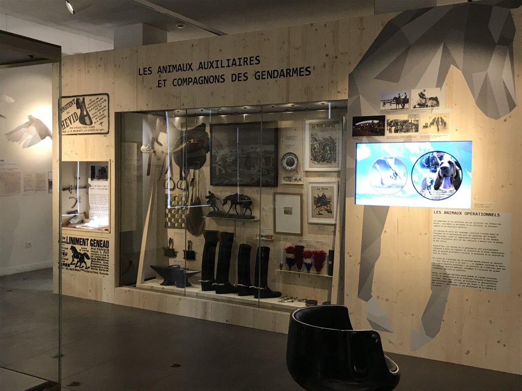 Vue de l'exposition Des animaux et des gendarmes, Musée de la Gnedarmerie nationale, Melun, IDF (6)