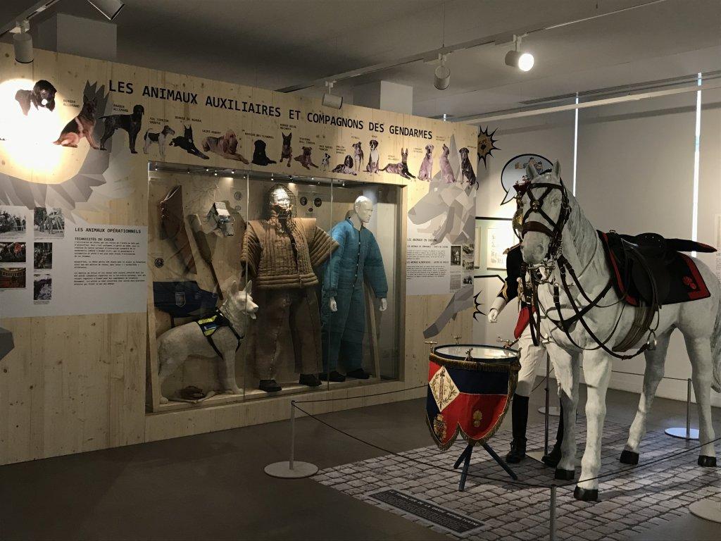 Vue de l'exposition Des animaux et des gendarmes, Musée de la Gnedarmerie nationale, Melun, IDF (9)