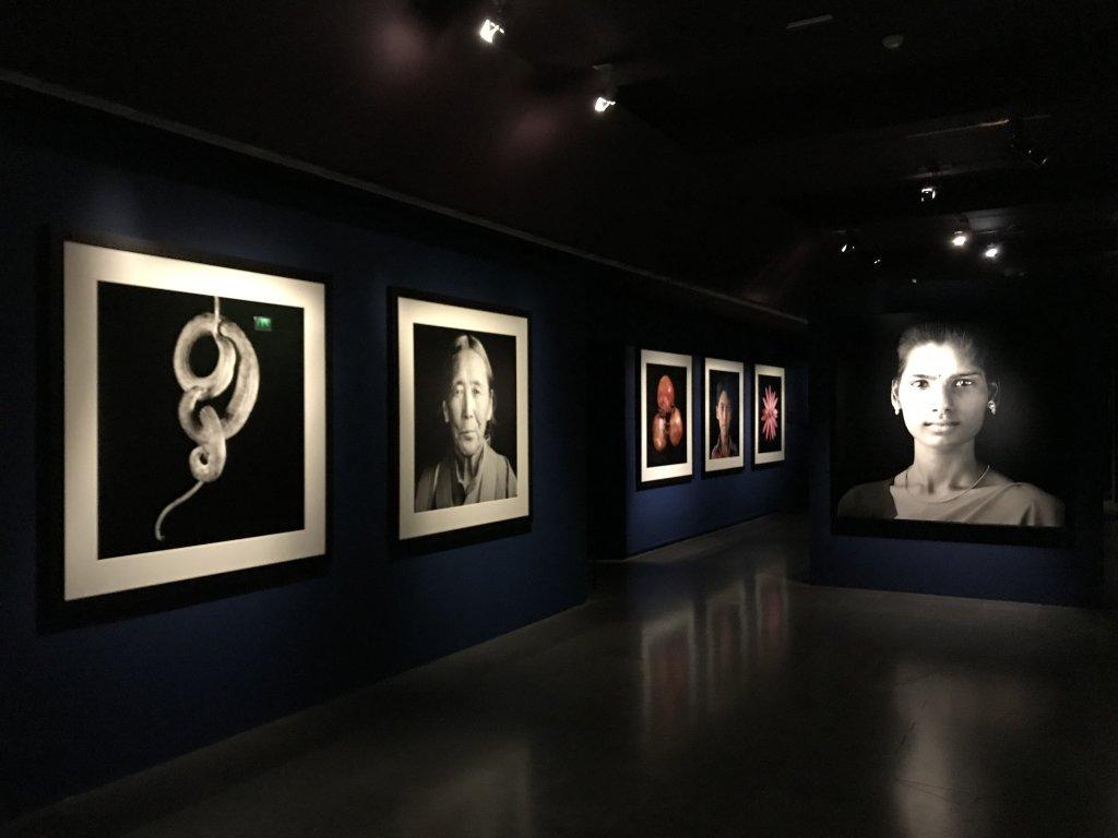 Vue de l'exposition Infinis d'Asie au Musée Guimet à Paris (4)
