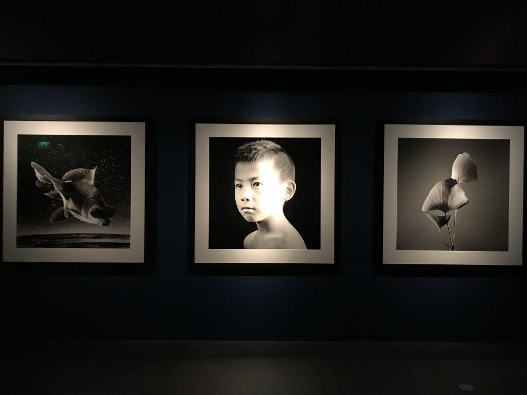 Vue de l'exposition Infinis d'Asie au Musée Guimet à Paris (8)