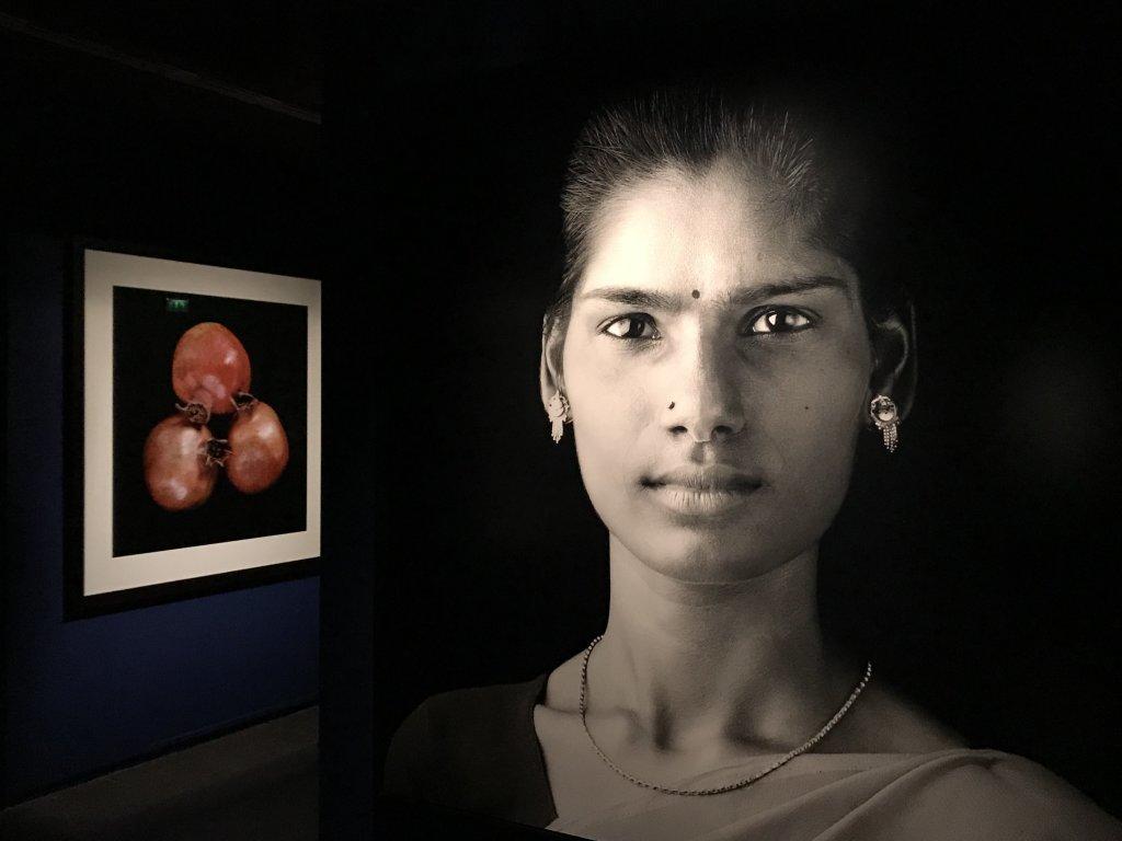 Vue de l'exposition Infinis d'Asie au Musée Guimet, Paris (50)