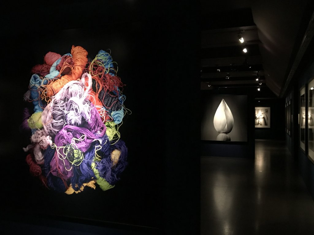 Vue de l'exposition Infinis d'Asie au Musée Guimet, Paris (77)