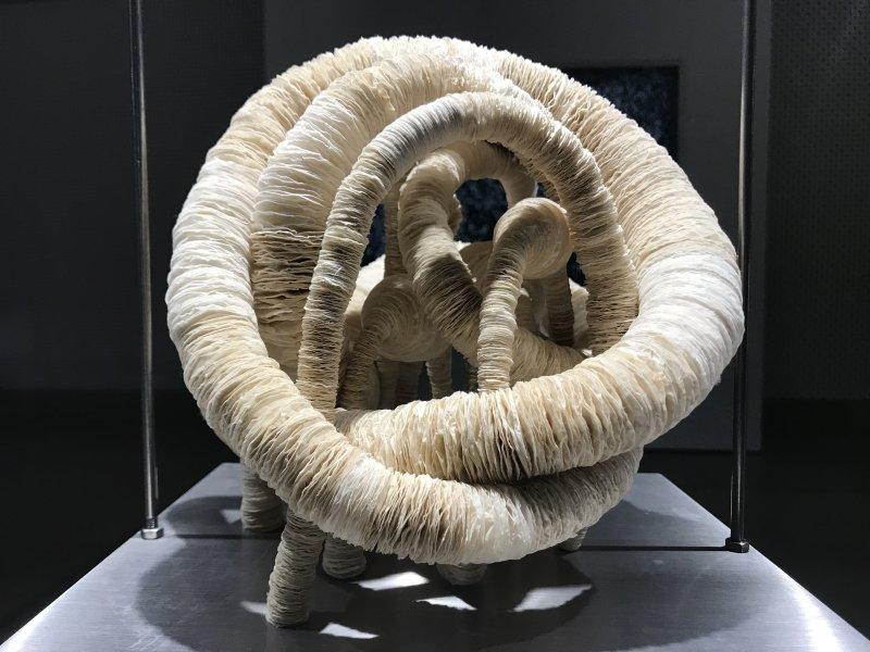 Vue de l'exposition Miniartextil 2019 Le Beffroi, Montrouge (84)