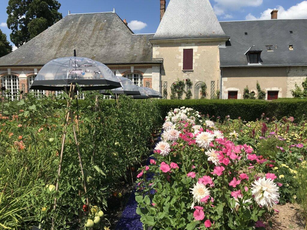 Vue du Domaine de Chaumont-sur-Loire